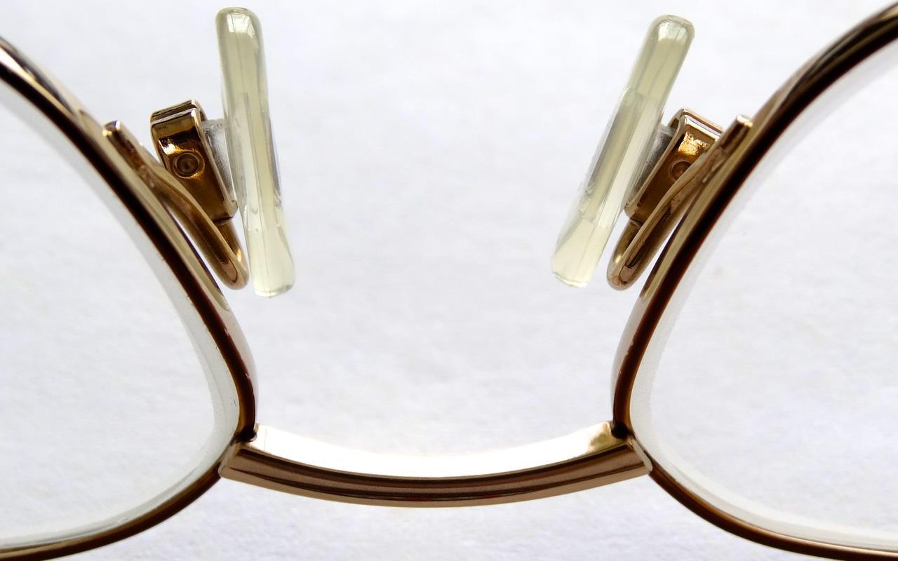 Hund und Brille: Sachen gibt's